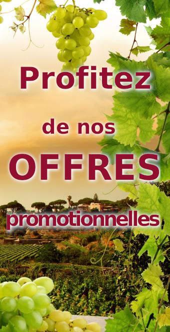 offres promotionnelles sur le vin rouge, vin blanc, vin rosé et champagne