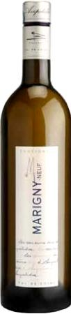 "Sauvignon ""Marigny-Neuf"" Ampelidae"